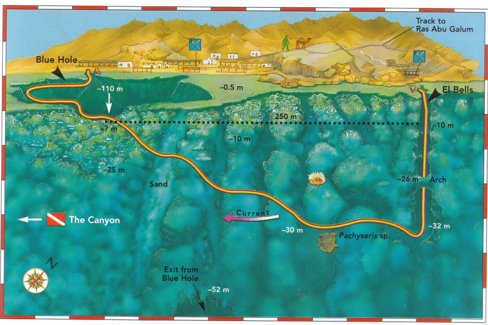Blue hole diving medicine summer school for Site de location